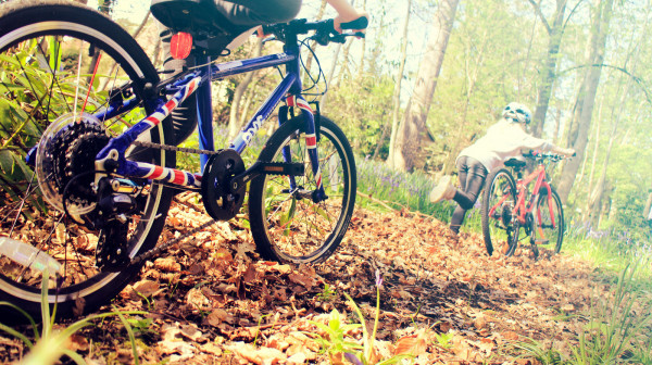 Frog Bikes - Image
